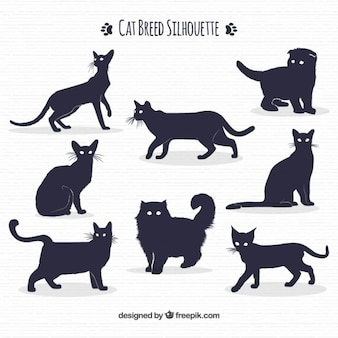 Cat breed silhouette pack