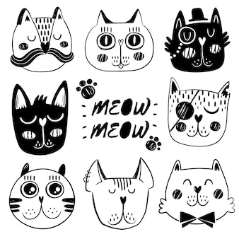 Cat facial expression collection