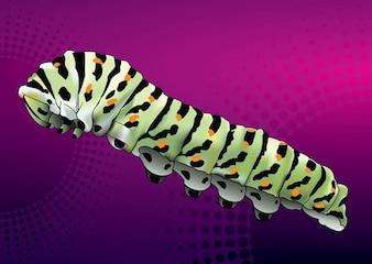 Caterpillar on purple background
