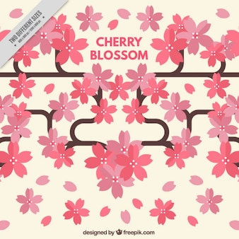 Cherry blossom branches background in flat design