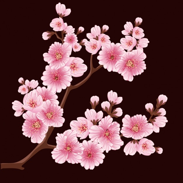 Cherry Blossoms Background Design
