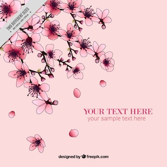 Cherry blossoms pink background