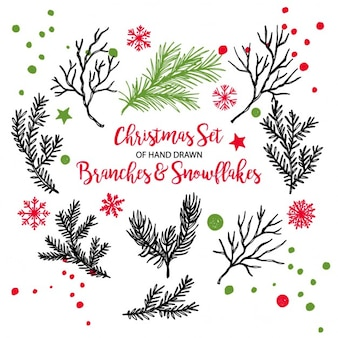Christmas background, branches and snowflakes