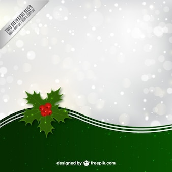 Christmas background with holly leaves