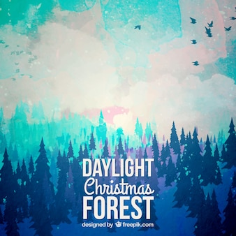 Christmas daylight forest background