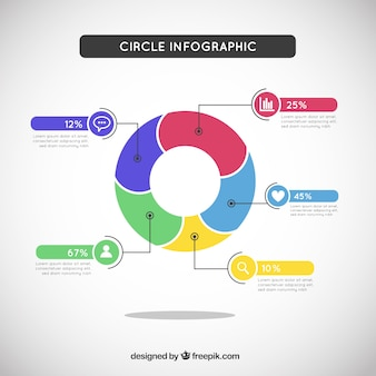 Circle infographic in colored style