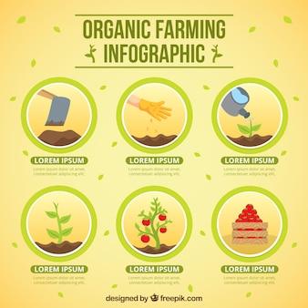 Circles with organic farming