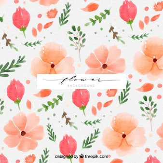 Classic background with watercolor flowers