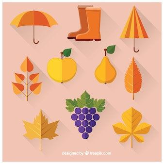 Collection of autumnal elements