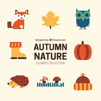 Collection of autumnal natural elements in flat design