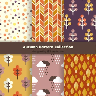 Collection of beautiful autumn patterns