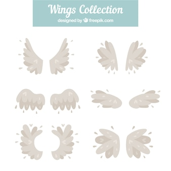 Collection of beautiful vintage wings