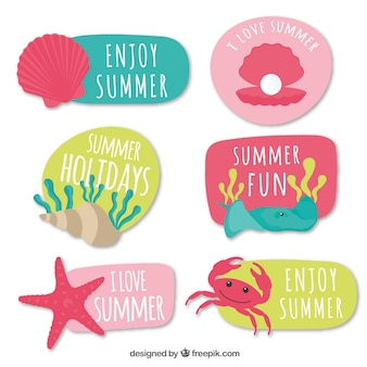 Collection of colorful summer stickers with messages