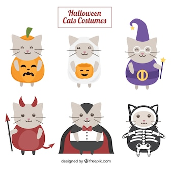 Collection of cute cat disguised as halloween
