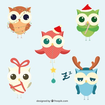 Collection of cute christmas owls