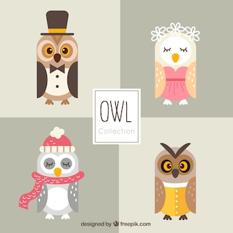 Collection of cute owls in flat design with clothes