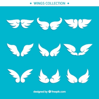 Collection of decorative wings in flat design