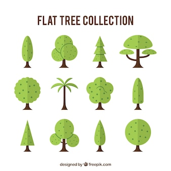 Collection of different types of trees