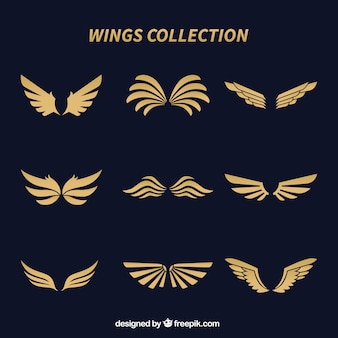 Collection of elegant golden wings