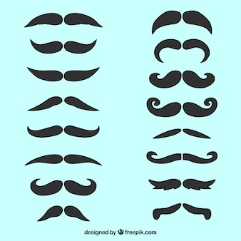 Collection of elegant mustache