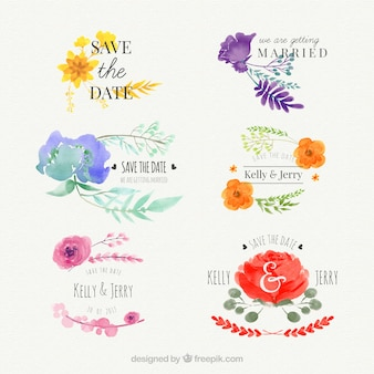 Collection of floral watercolor elements for wedding