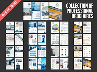 Collection of four multiple pages brochures with cover page design.