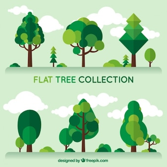 Collection of green trees in flat design