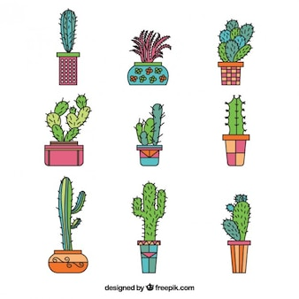 Collection of hand drawn cactus