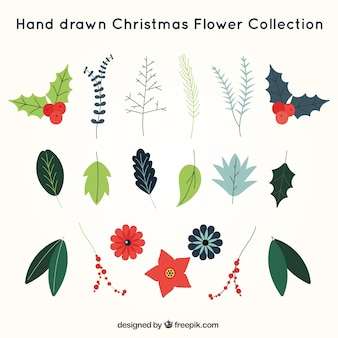 Collection of hand-drawn christmas flowers