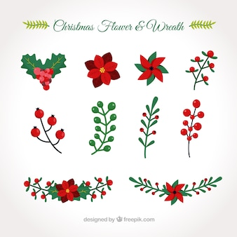 Collection of hand drawn christmas flowers