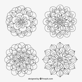 Collection of hand drawn ornamental floral element