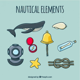 Collection of hand drawn whale and nautical element