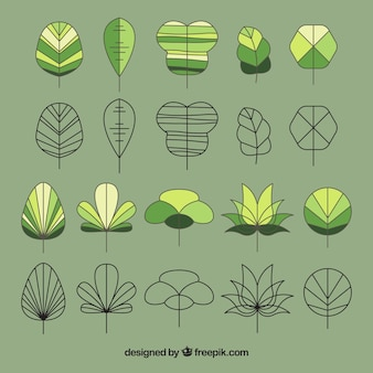 Collection of leaves sketches