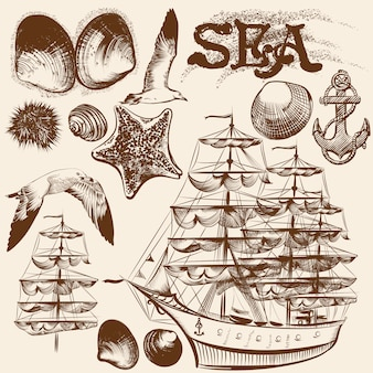 Collection of natural marine elements and old boat