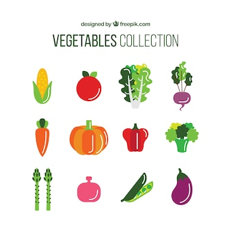 Collection of nutritious vegetable