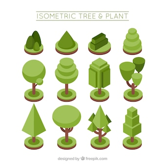 Collection of plants and trees in isometric style