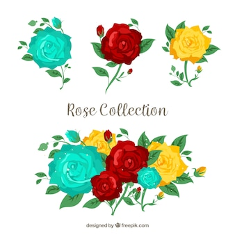Collection of roses with three colors