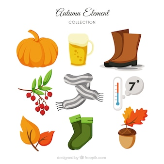 Collection of scarf and other elements of autumn