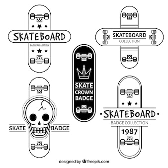 Collection of stylish modern skateboard