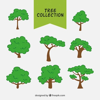 Collection of tree in flat design