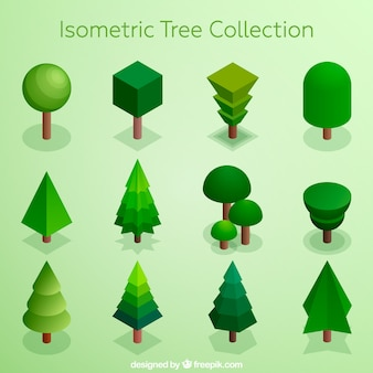 Collection of trees in isometric style