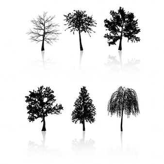 Collection of trees on a white background