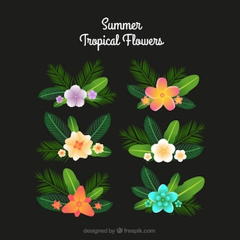 Collection of tropical flower with palm leaves