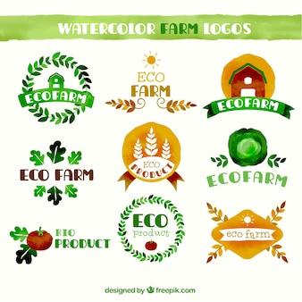 Collection of watercolor farming logo