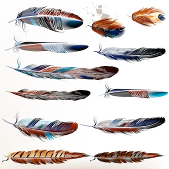 Collection of watercolor feathers