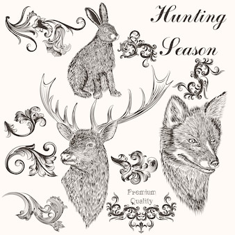 Collection of wild animals and hand drawn ornaments
