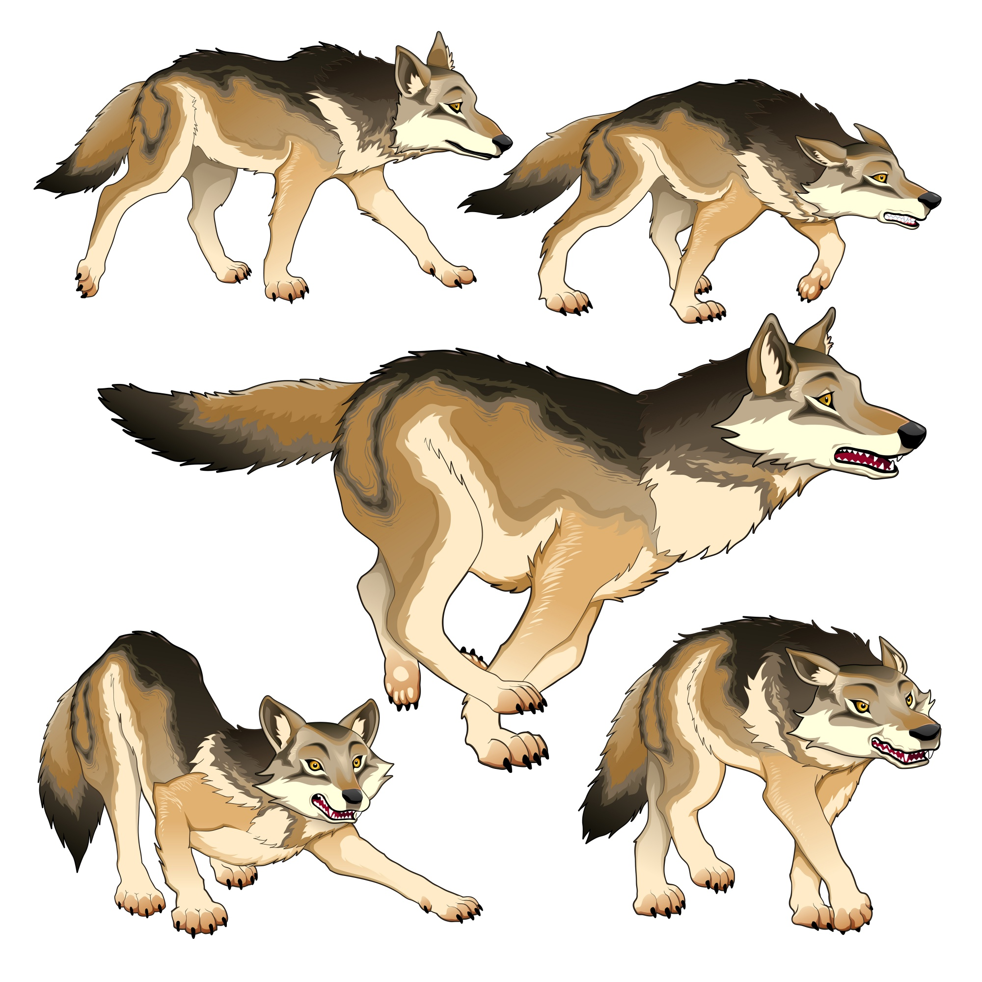 Collection of wolves in different poses