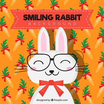 Colored background of smiling rabbit