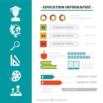 Colored education infographic