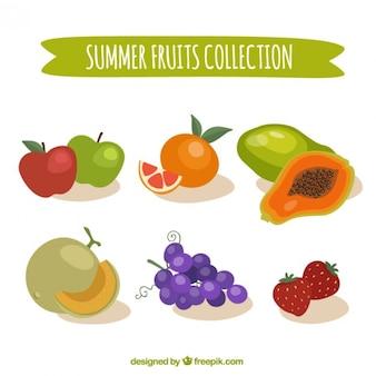 Colored summer fruits set